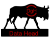 Data Head - 6,960 octets